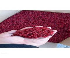 Manufacturer of barberry and saffron patergan